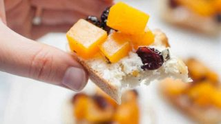 Cranberry Goat Cheese Butternut Squash Toast