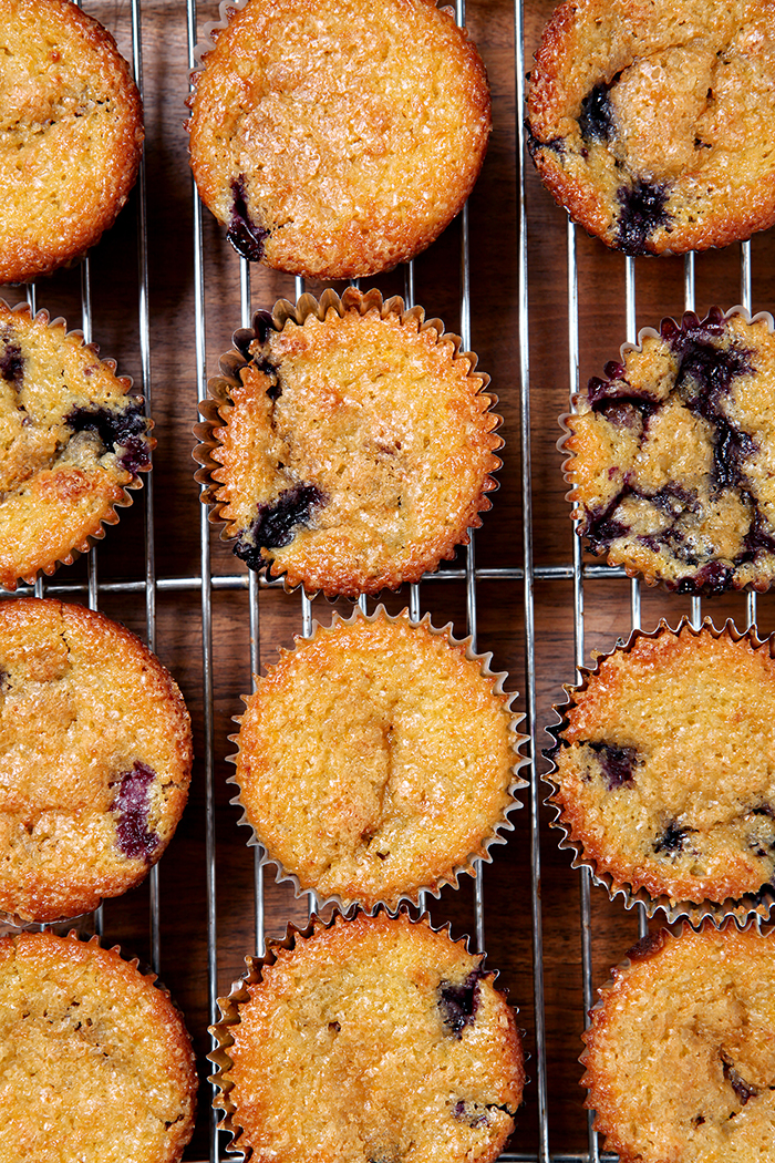 Blueberry Orange Muffins | Blueberry season is just around the corner, and what better way to start the day than with a delightful Blueberry Orange Muffin? Slightly sweet and delicious, these muffins sing of the summertime. | @speckledpalate for @madisonlynn35