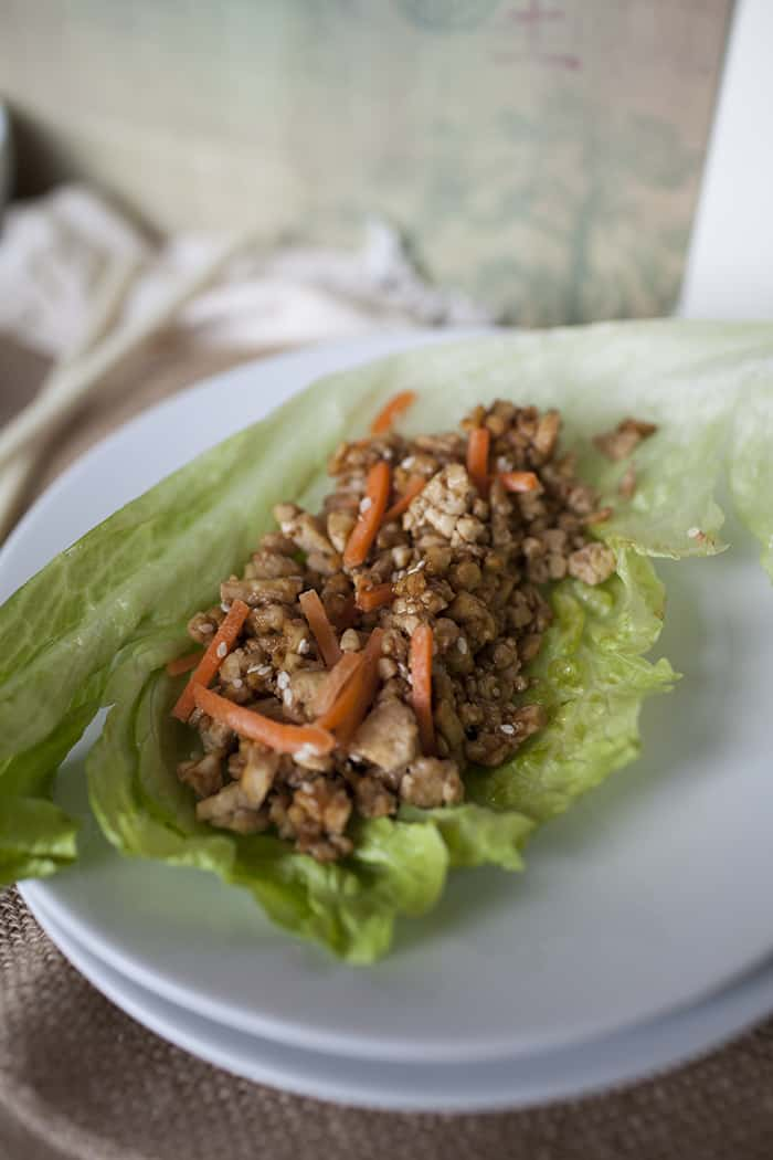 Whether you're a meat lover, vegetarian or vegan, this is a lettuce wrap recipe you'll love. This easy recipe is quick and takes only a few ingredients!