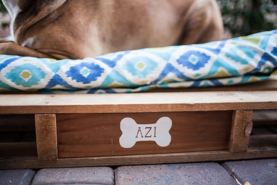 easy-diy-outdoor-dog-pallet-bed-4