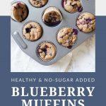 Healthy No Sugar Added Blueberry Muffins
